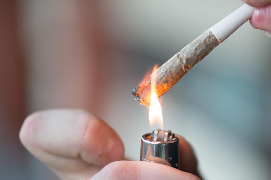 Angebrannte Spätzle führen zu Cannabis-Aufzuchtanlage