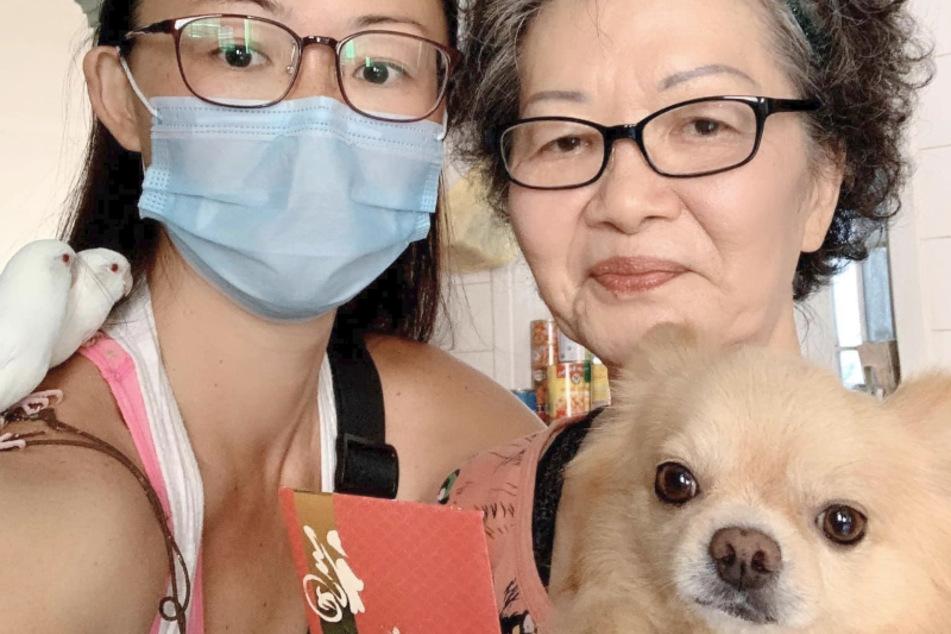 Laut Rachel Liaw hat der kleine Chihuahua kein Problem mit der ungewöhnlichen Kopfbedeckung.