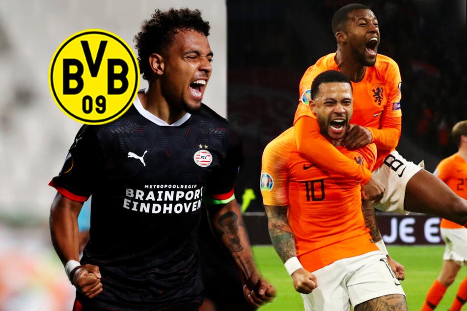 BVB vor Sommer-Transferkracher? Dortmund an zwei niederländischen Stars dran!