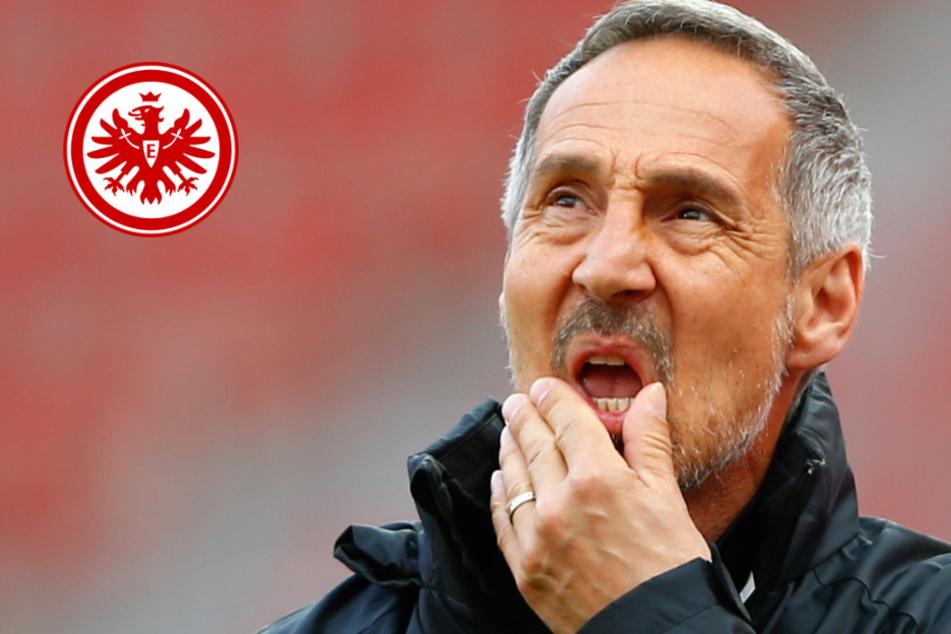 Eintracht-Trainer Adi Hütter schockt Fans mit ARD-Interview