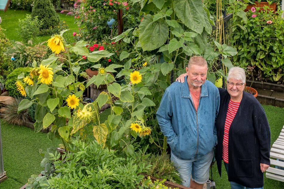 Für Gisela (72) und Christian (71) ist das XXL-Gewächs eine Überraschung.