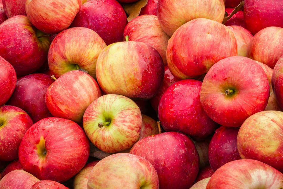 One British grocery shopper got a lot more than apples as a gift with his online order (stock image).