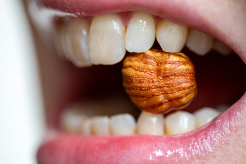 Haselnuss-Allergien können Ausschlag, Atemnot und sogar lebensbedrohliche Folgen haben. (Symbolbild)