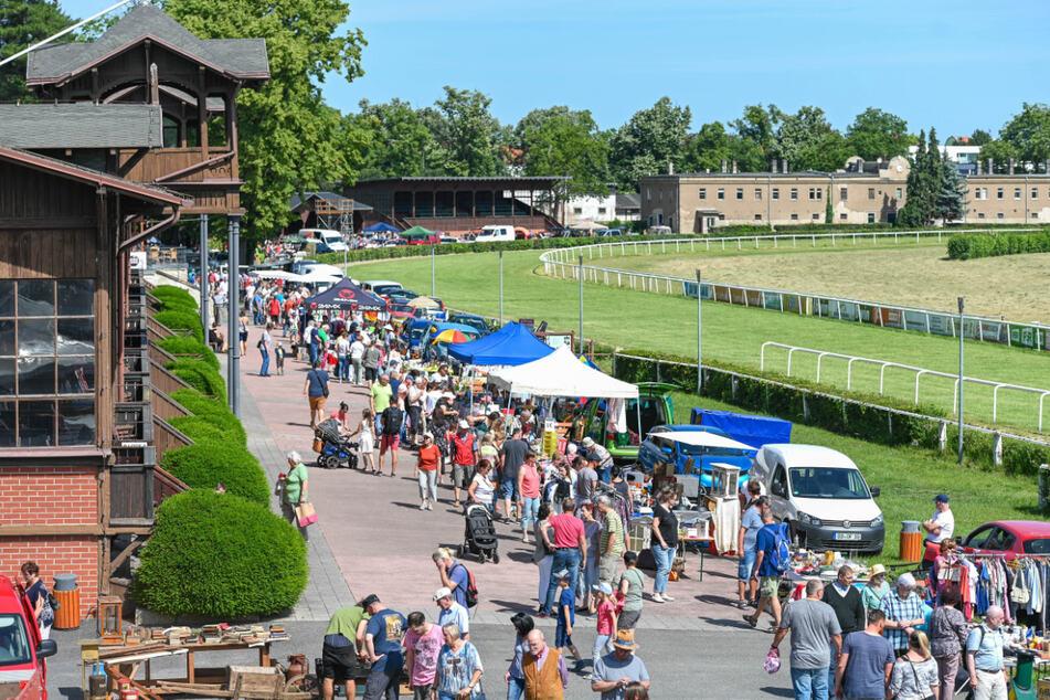 Am Sonntag ist wieder Trödelmarkt auf der Galopprennbahn.