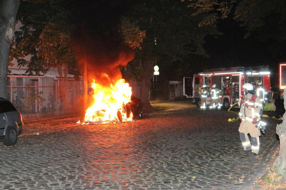 Berlin: Wieder nächtliche Brände in Berlin: Autos gehen in Flammen auf