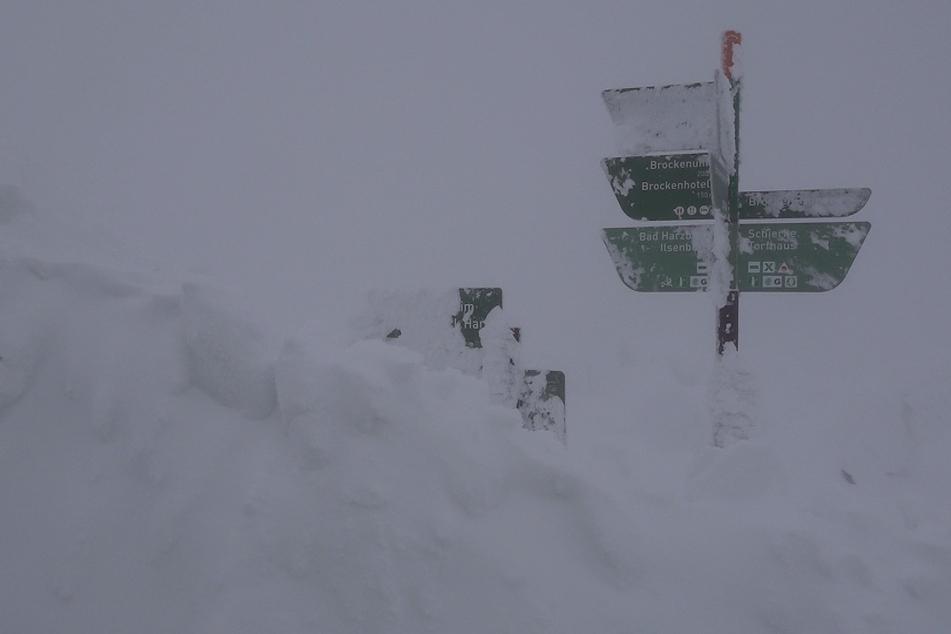 Versunken im Schnee: Im Harz sind einige Straßen völlig zugeschneit.
