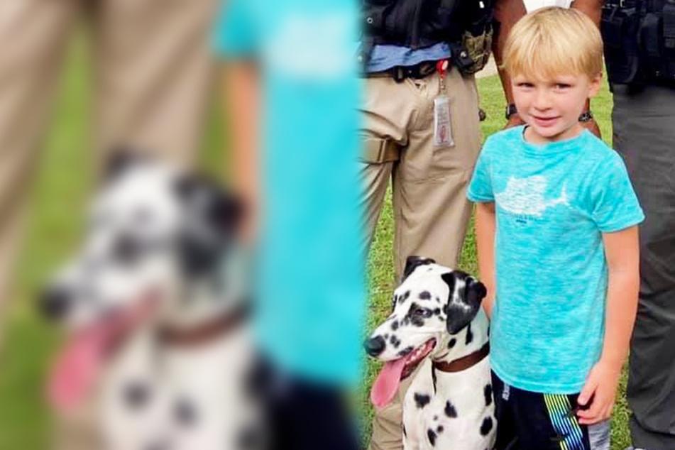 Kind wird Dalmatiner gestohlen, Polizei erwischt Hunde klauende Frau!