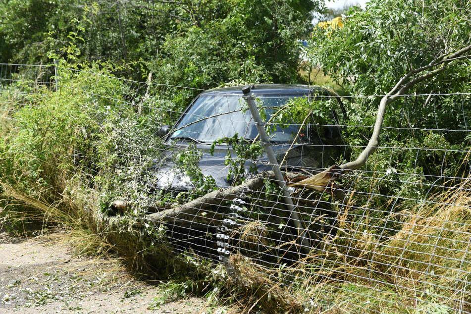 Die Fahrt des Wagens fand ihr Ende erst am Wildschutzzaun.