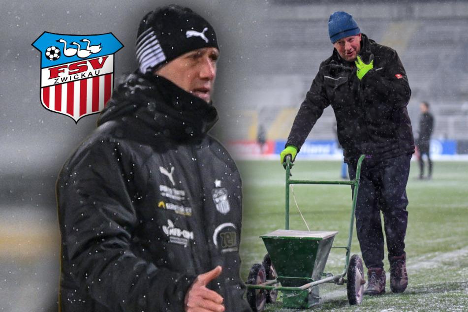 """FSV-Coach Enochs nach Bayern-Niederlage: """"Nächstes Mal bringen wir rote Farbe aus Zwickau mit"""""""