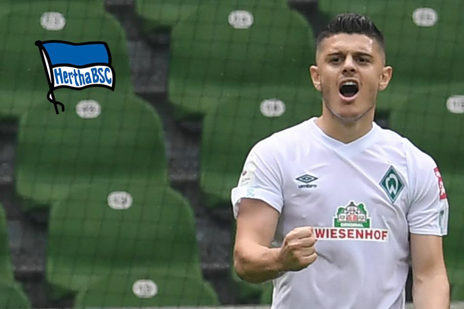 Rashica-Wechsel zu Hertha vom Tisch: Stürmer bleibt bei Werder Bremen