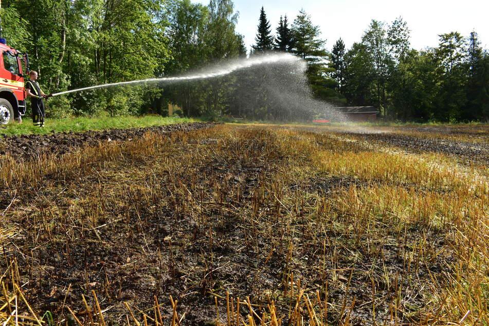 Auch in Lugau gab es einen Feldbrand.