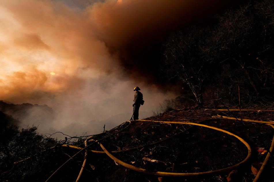 Im Mai dieses Jahres kämpfte die Feuerwehr gegen Buschfeuer bei Los Angeles.