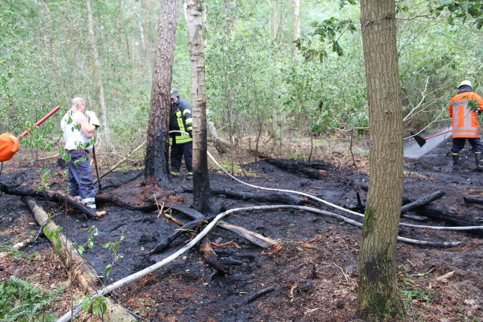 Waldbrand sorgt für Großeinsatz der Feuerwehr