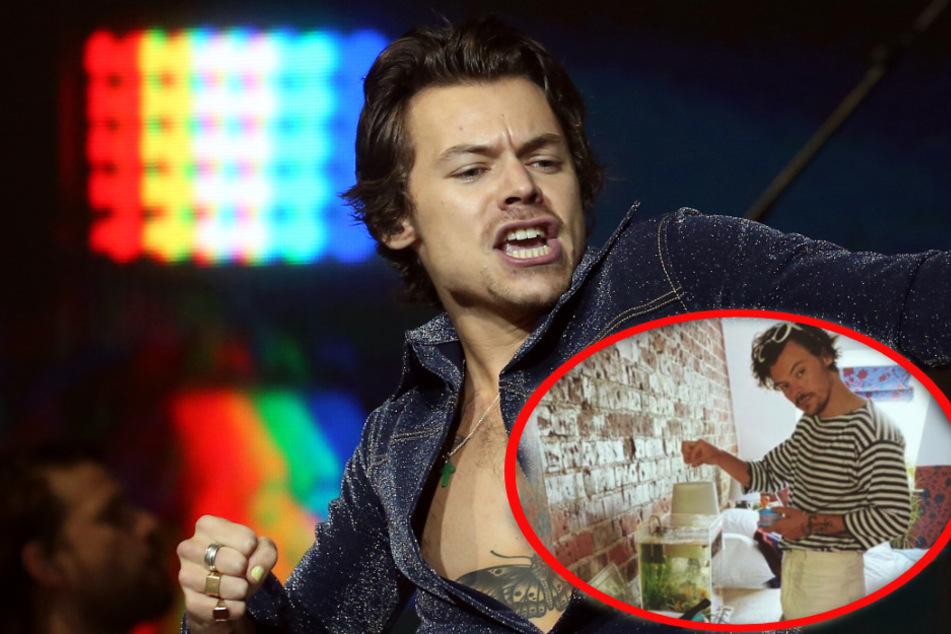 Harry Styles chillt nach Autopanne im Kinderzimmer eines Fans und hinterlässt zuckersüßen Brief!