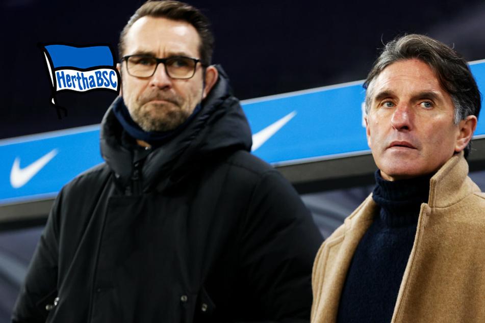 Nach Sieglos-Serie: Hertha BSC steht gegen Werder Bremen unter Druck