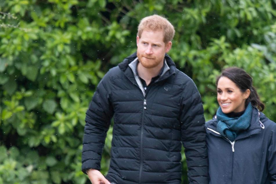 Zum Wohl! Gibt es bald Wein von Harry und Meghan?