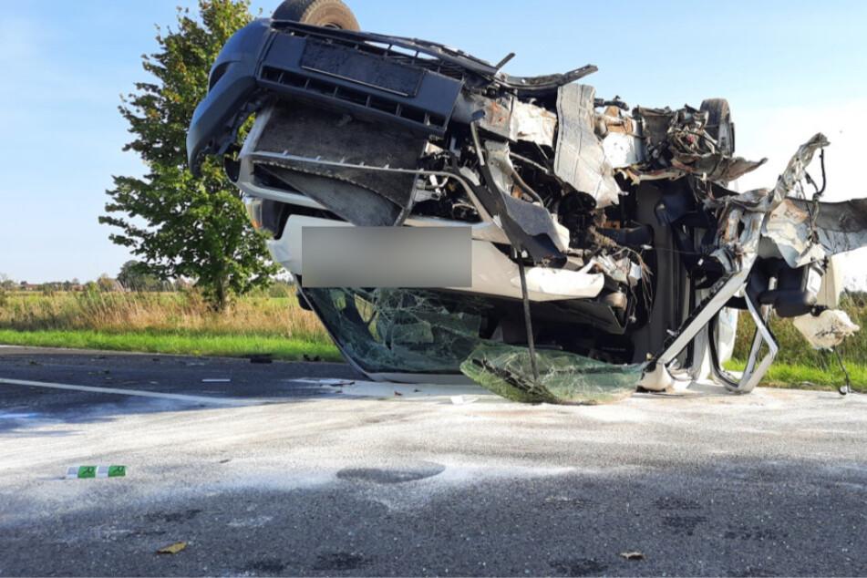 Horror-Crash in der Lausitz: Paketdienst fällt Baum und bleibt auf Dach liegen