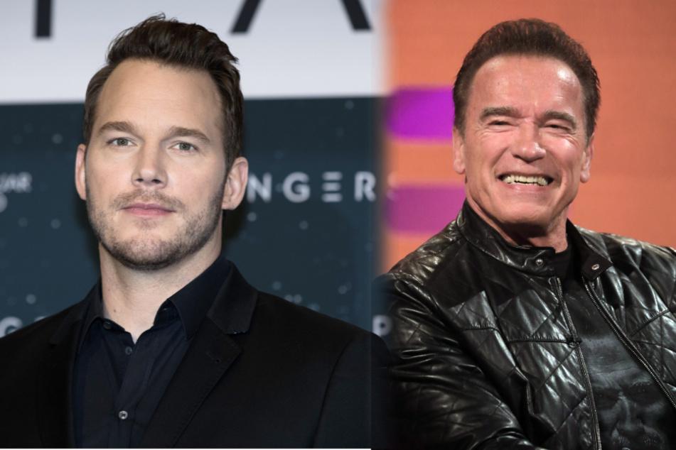 """""""Ein fantastischer Kerl"""": Arnold Schwarzenegger lobt seinen Schwiegersohn Chris Pratt"""