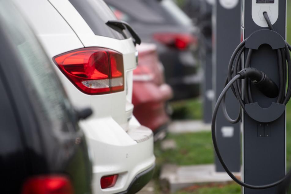 E-Auto-Kaufprämie: Anträge erreichen Rekordhoch