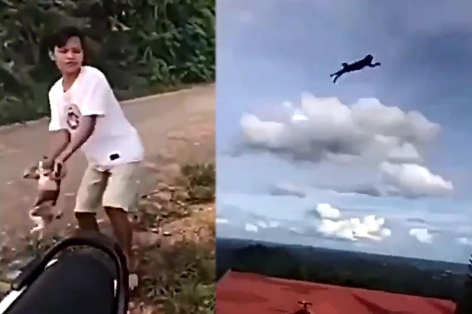 Perverses Video: Junge schleudert Katze in die Tiefe, doch er ahnt nicht, was ihm blüht!
