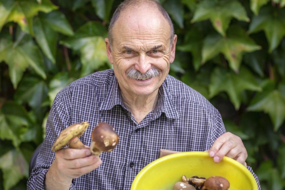 Schwamme-Experte Frank Demmler (74) geht hoffnungsvoll in die Pilzsaison.