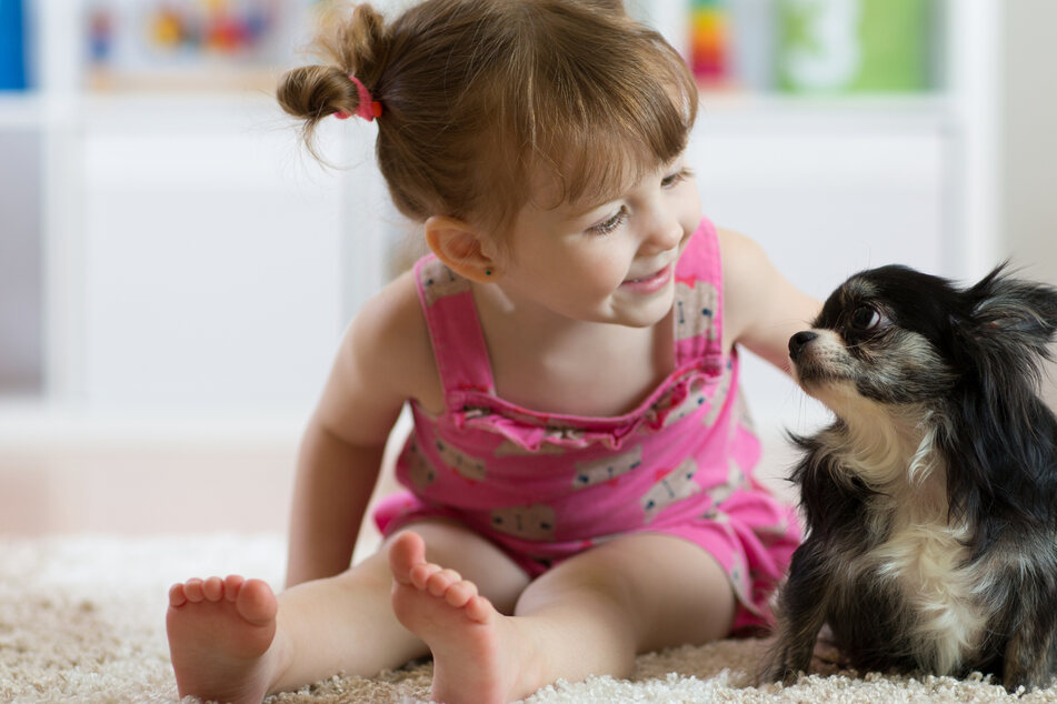 Freundschaft auf Diplom! So werden Kinder und Hunde beste Kumpel