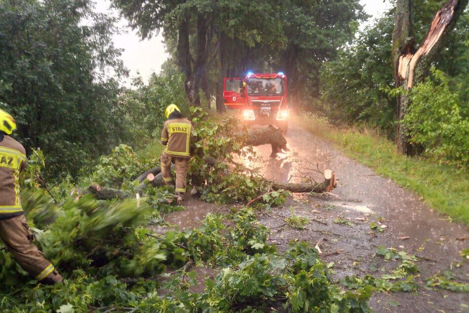 Die Freiwillige Feuerwehr aus Reszel musste umgestürzte Bäume entfernen, kämpfte mit Überschwemmungen in Häusern und auf Straßen.
