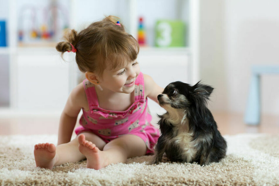 Children and dogs can become best friends if the boundaries are clearly defined.