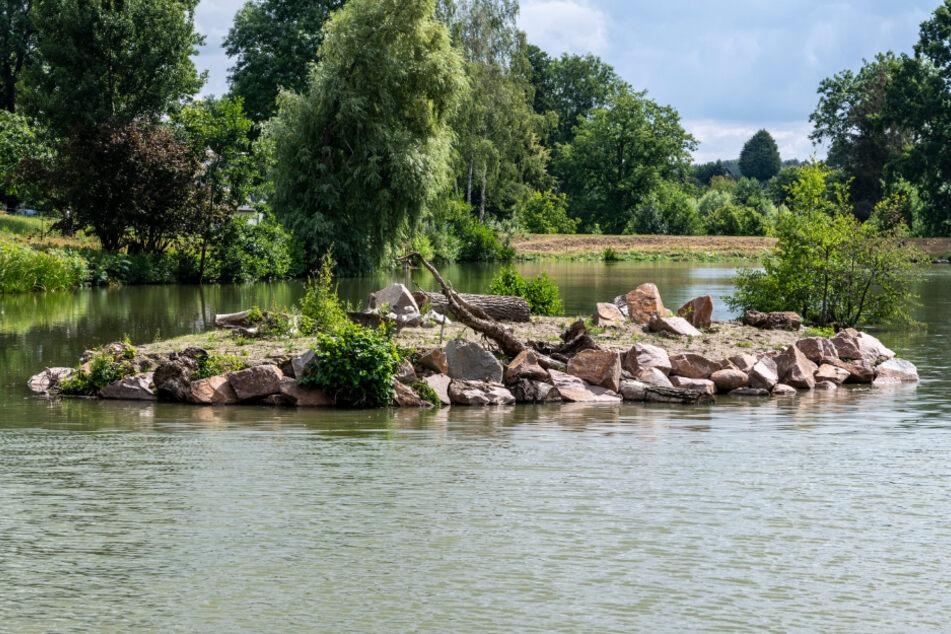 Vogelparadies: Die Schutzinsel im großen Murschnitzer Teich.