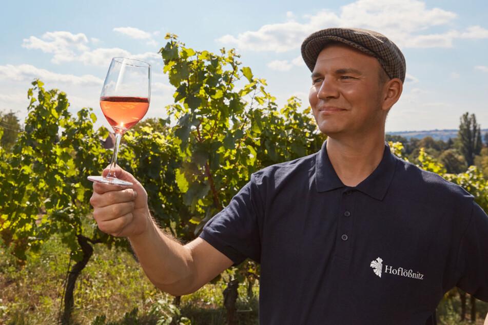 Im Weingut Hoflößnitz gibt es leckeren Wein.
