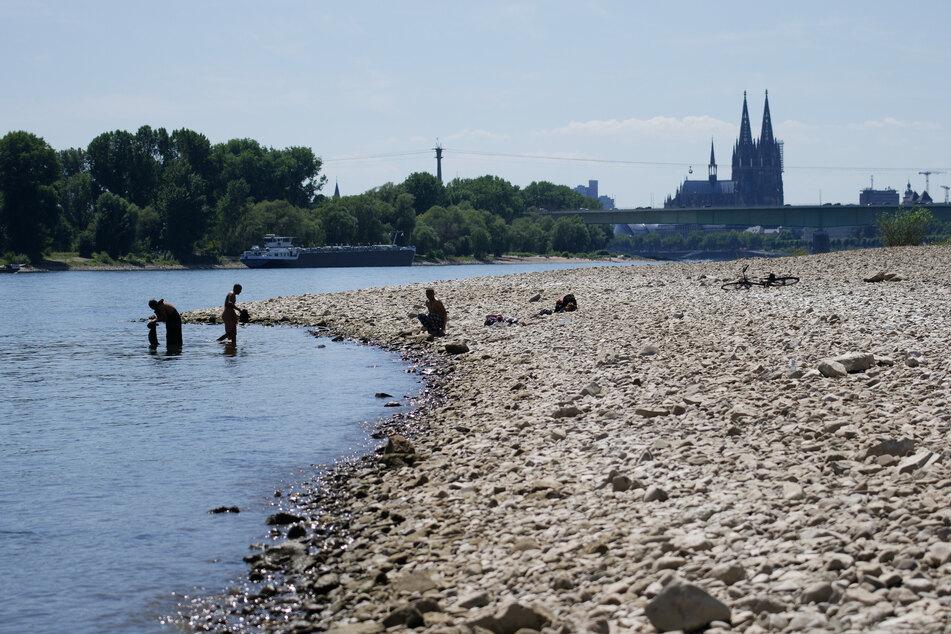 Menschen genießen das sonnige Wetter am Rhein. Bis zum Wochenende soll es in NRW trocken bleiben, am Samstag rechnet der Deutsche Wetterdienst jedoch mit Starkregen.