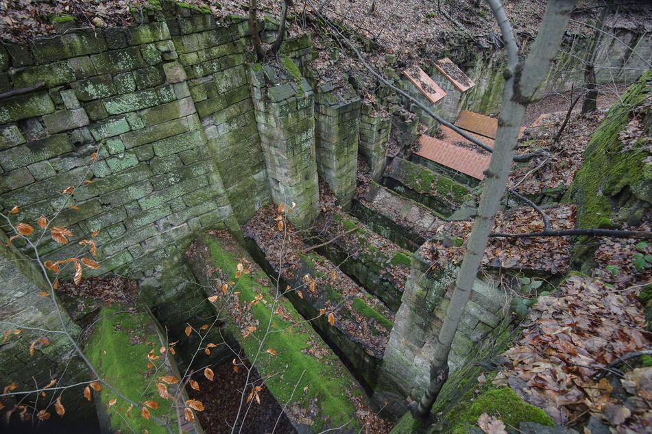 Blick auf die Teufelsbrücken im Zeisigwald.