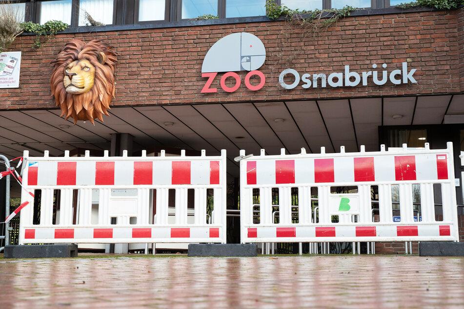 Wenn Merkels Notbremse kommt: Zoo bereitet Klage am Bundes-Verfassungsgericht vor!