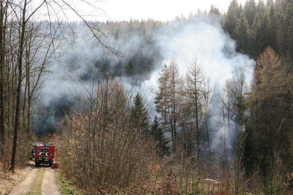 Erzgebirge: Rauchwolke steigt aus dem Wald