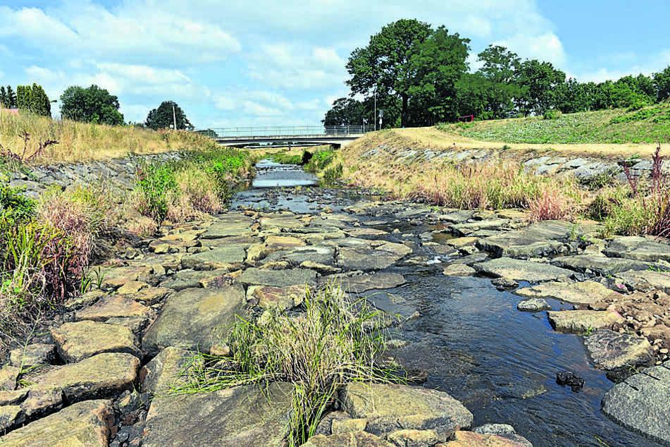 Ausgetrocknete Uferzonen: Die Talsperre Bautzen ist nur noch zu zwei Dritteln gefüllt.