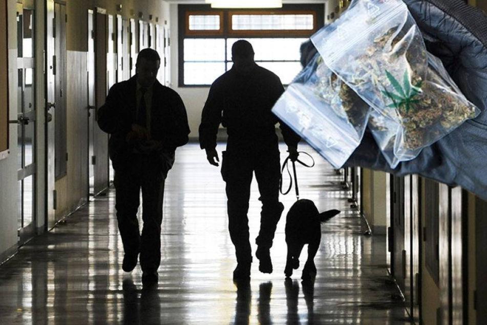 Mehr Drogenfunde in Sachsens Haftanstalten