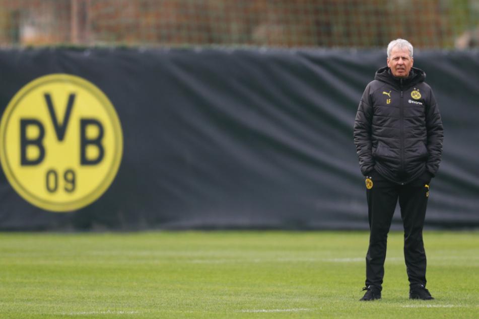 Für BVB-Coach Lucien Favre (62) und sein Team stehen bislang sechs Testspiele auf dem Programm.