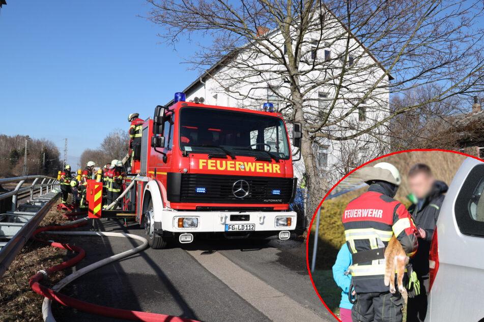 Chemnitz: Brand in Mehrfamilienhaus: Feuerwehr rettet Katze