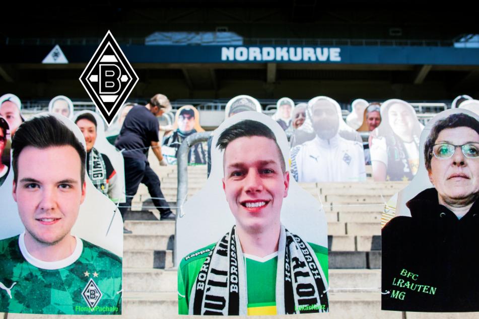 Mönchengladbach präsentiert kreative Zuschauer-Lösung für geplante Geisterspiele