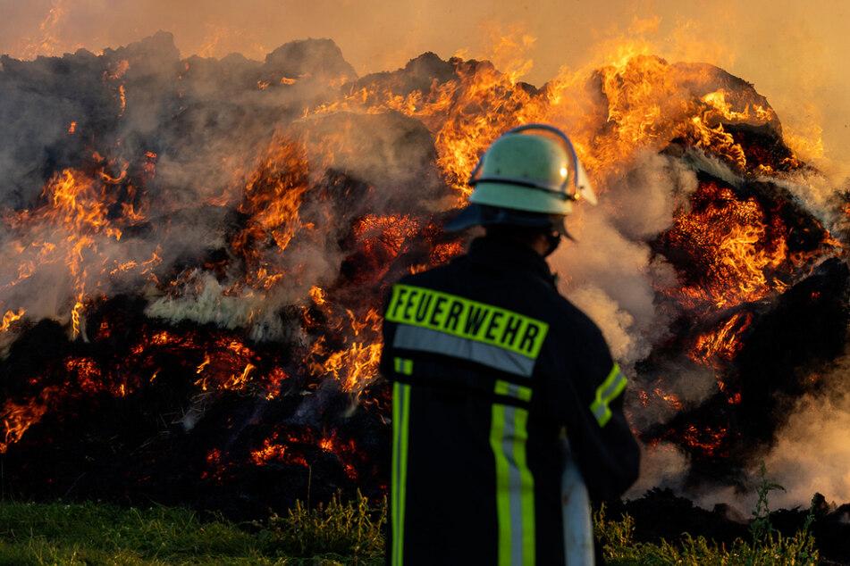 Unter der Aufsicht der Feuerwehr brannten die 106 Strohballen auf dem Feld in Groß-Umstadt ab.