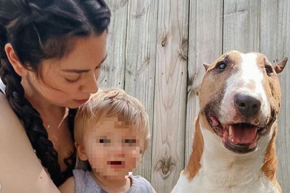 Vierbeiner Bowser musste sterben, nachdem er den kleinen Sohn von Nikki Phillippi gebissen hatte.