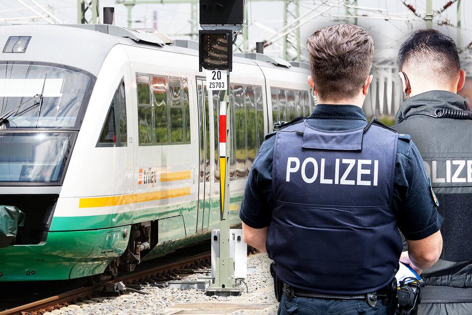 Mit einem Trilex-Zug fuhren die drei Kinder von Bautzen nach Görlitz, wo sie schließlich von der Polizei aufgegriffen wurden (Symbolbild).