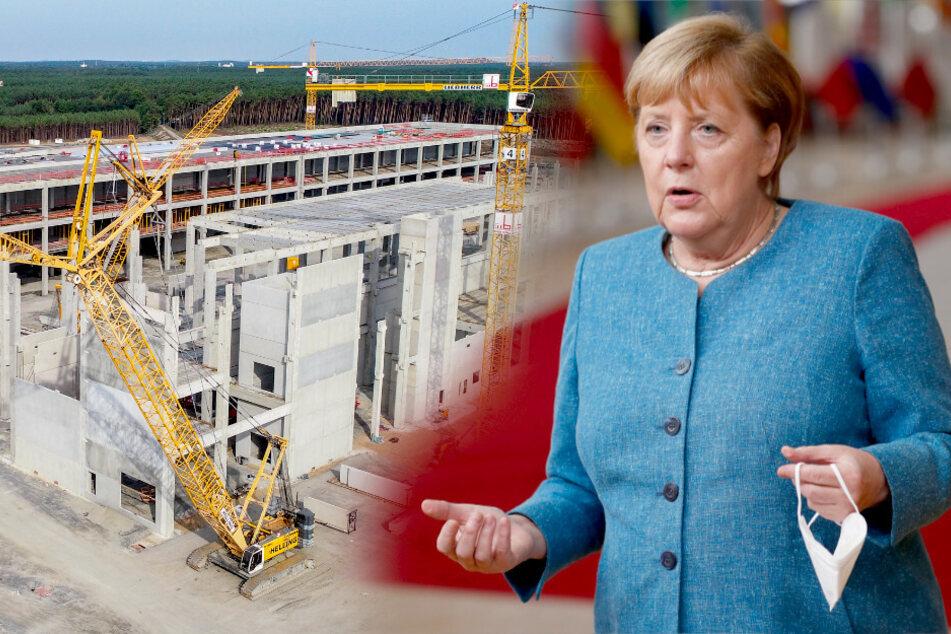 """Merkel über Tesla-Ansiedlung: """"Dass es Proteste gibt, gehört dazu"""""""
