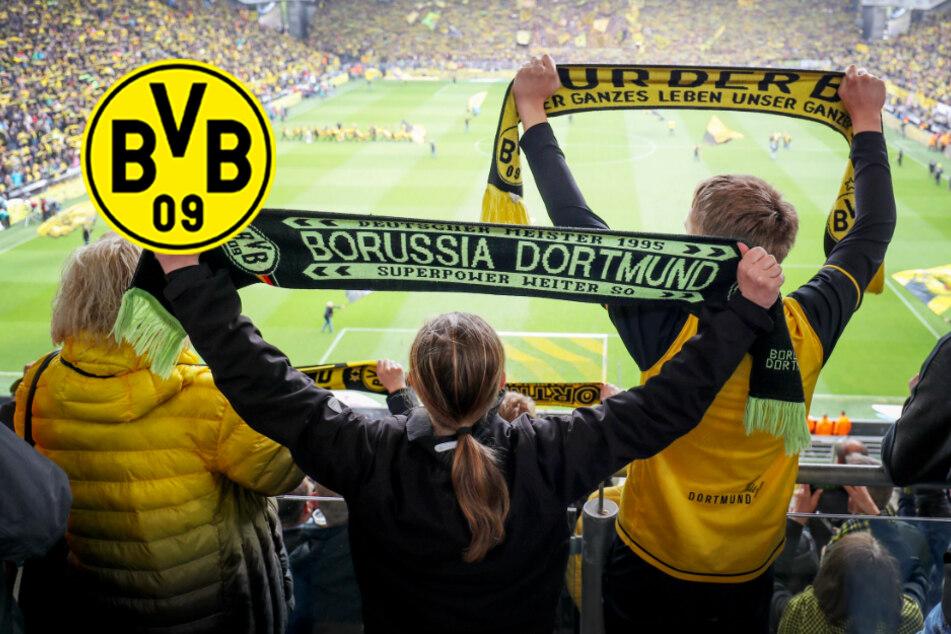 BVB erarbeitet Konzept zur Rückkehr von Fans ins Stadion: Hürden sind hoch