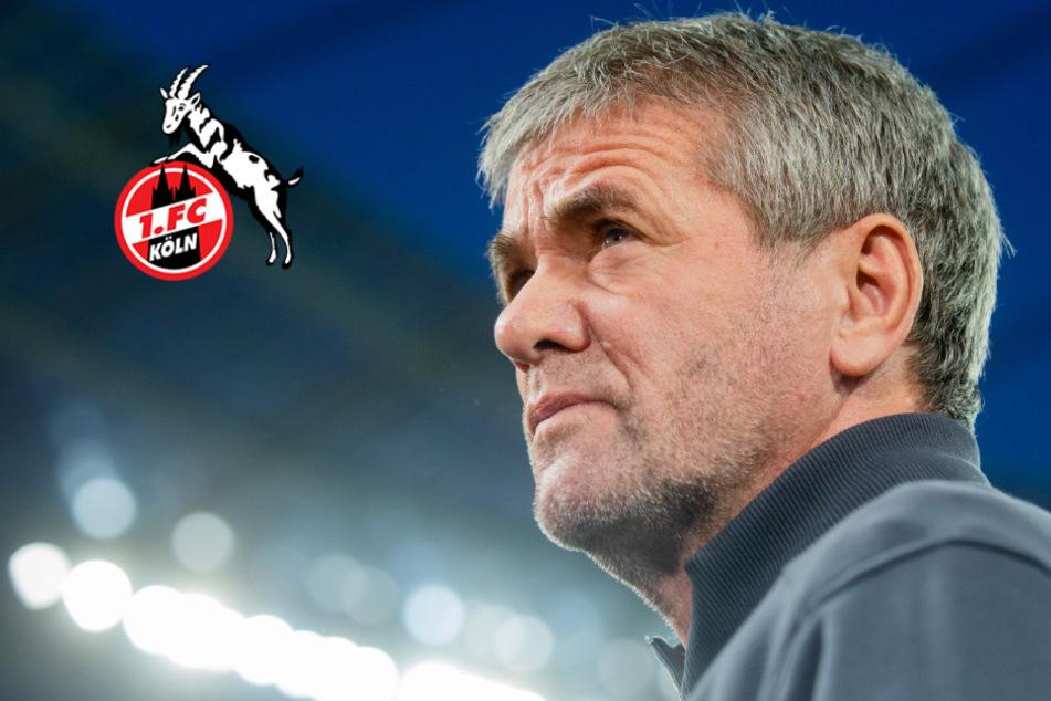 Ära Gisdol vorbei: Funkel Favorit auf Trainerstuhl beim 1. FC Köln