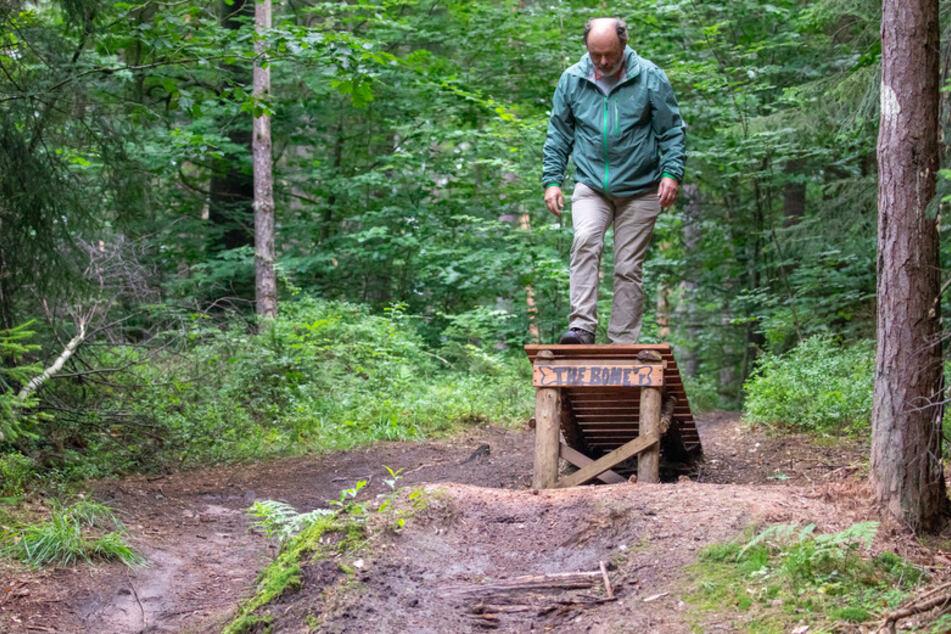 Mit Spitzhacken in den Wald gezogen: Ärger um illegale Mountainbike-Strecken
