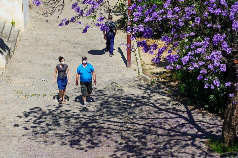 Zwei Personen mit Mundschutz gehen in Sevilla spazieren. Ab Donnerstag muss man in Spanien in allen öffentlich Räumen, also etwa auch in Geschäften, Schutzmaske tragen. Die Pflicht gilt auch im Freien, wenn der minimale Sicherheitsabstand von zwei Metern nicht gewährleistet werden kann.