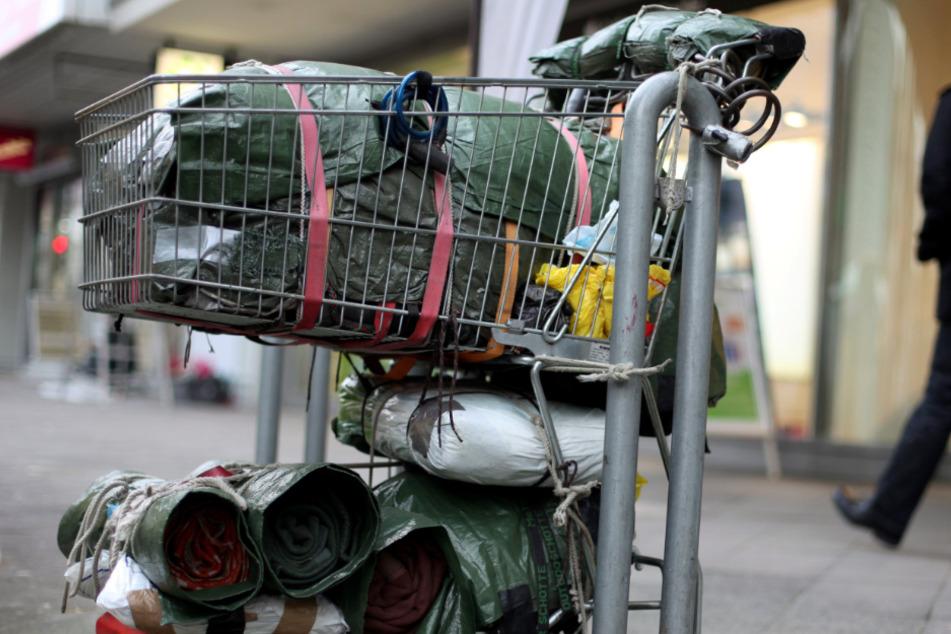 Hundekadaver in Einkaufswagen entdeckt: Anblick lässt Grausames vermuten