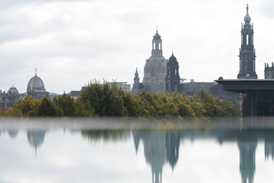 In der Stadt Dresden liegt die Inzidenz momentan bei 77,3.