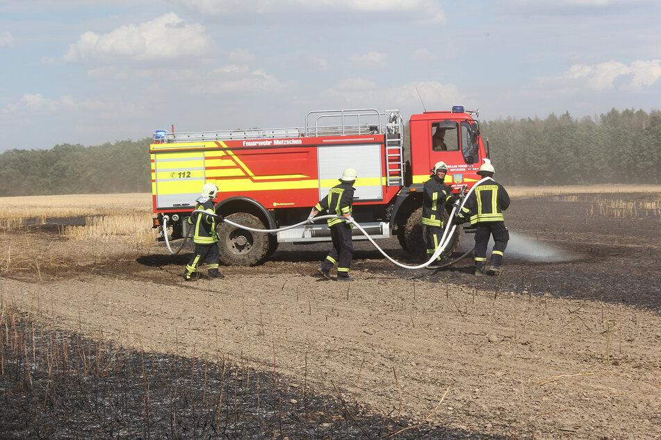 Die Feuerwehrleute hatten am Freitag viel zu tun.